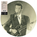 Access All Areas (Limited Vinyl Picture Disc)